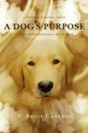 a dogs purpose torrent download